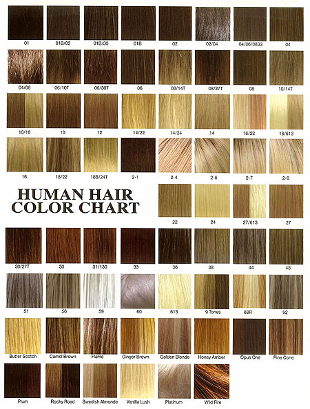 Hair Color Codes Best Hair Color 2017